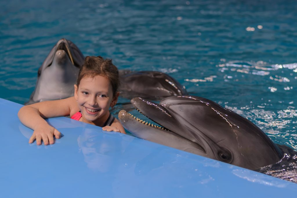Встречаем Новый год с дельфинами!